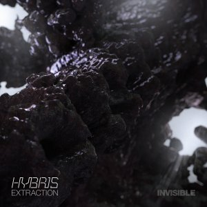 Hybris - Extraction